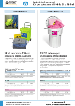 Kit per sversamenti da 51 a 79 litri serpac.it